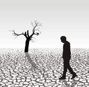 How Do Humans Affect the Environment